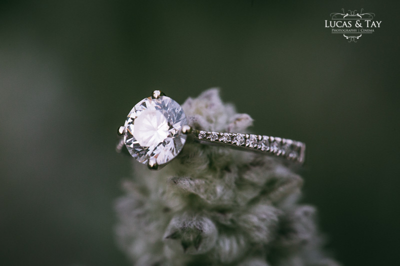 highpark-engagement-session-54.jpg