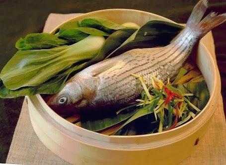 Fish ready for steamed with herbs and vegetables