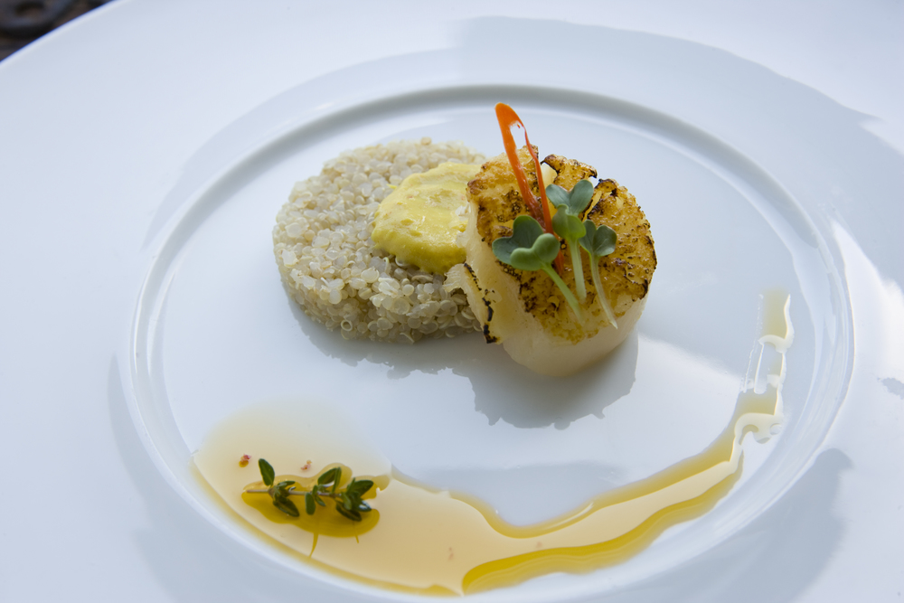 Scallop w/ Quinoa and Turmeric Infused Oil