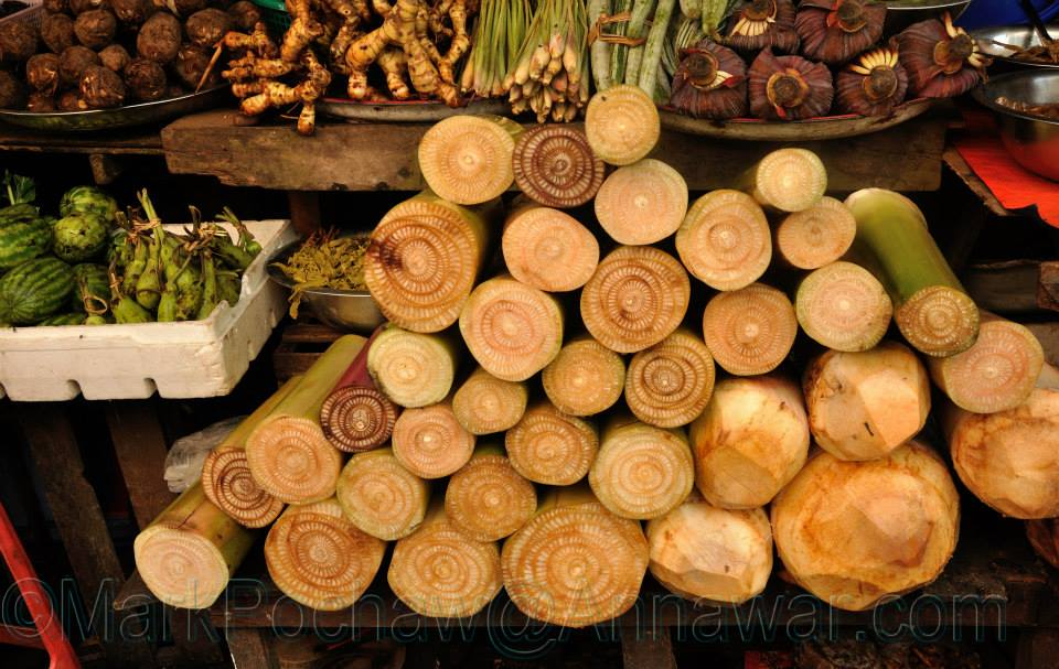 Banana Bark for Cooking Mohinga (Burmese Lemongrass Fish Soup)