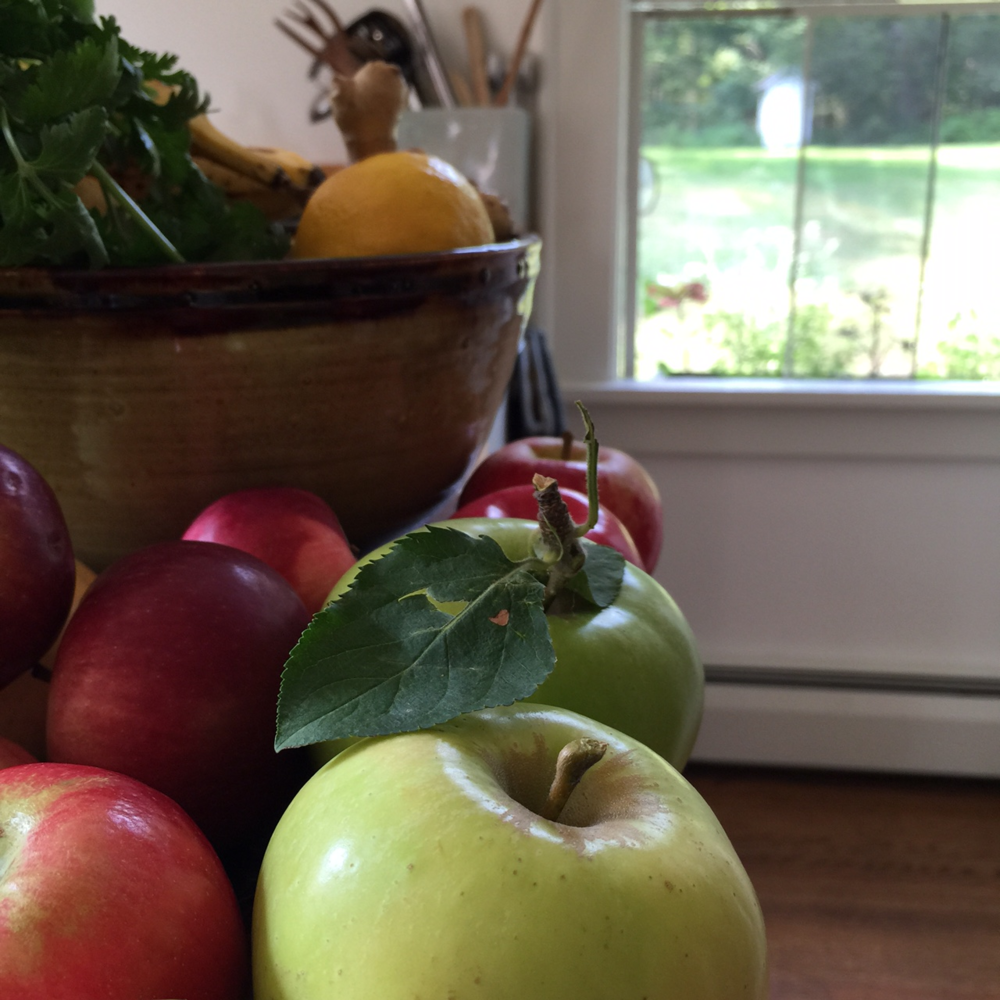 Freshly picked apples cheer our kitchen table.