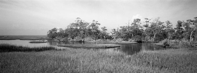 Marsh II