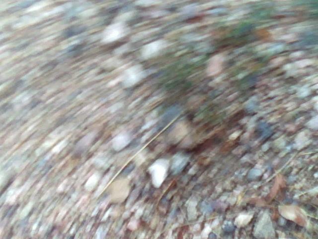 """""""Frame 1435"""". Energy. Cache la Poudre River, CO. 2012"""