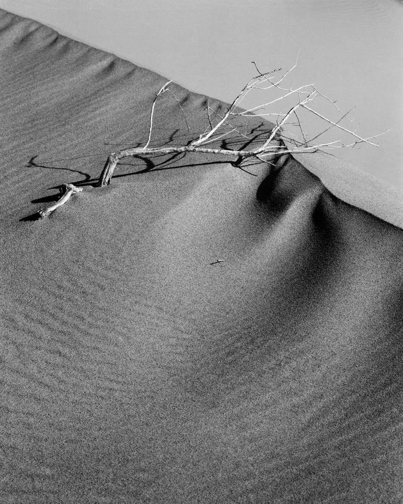 Mesquite Flat I