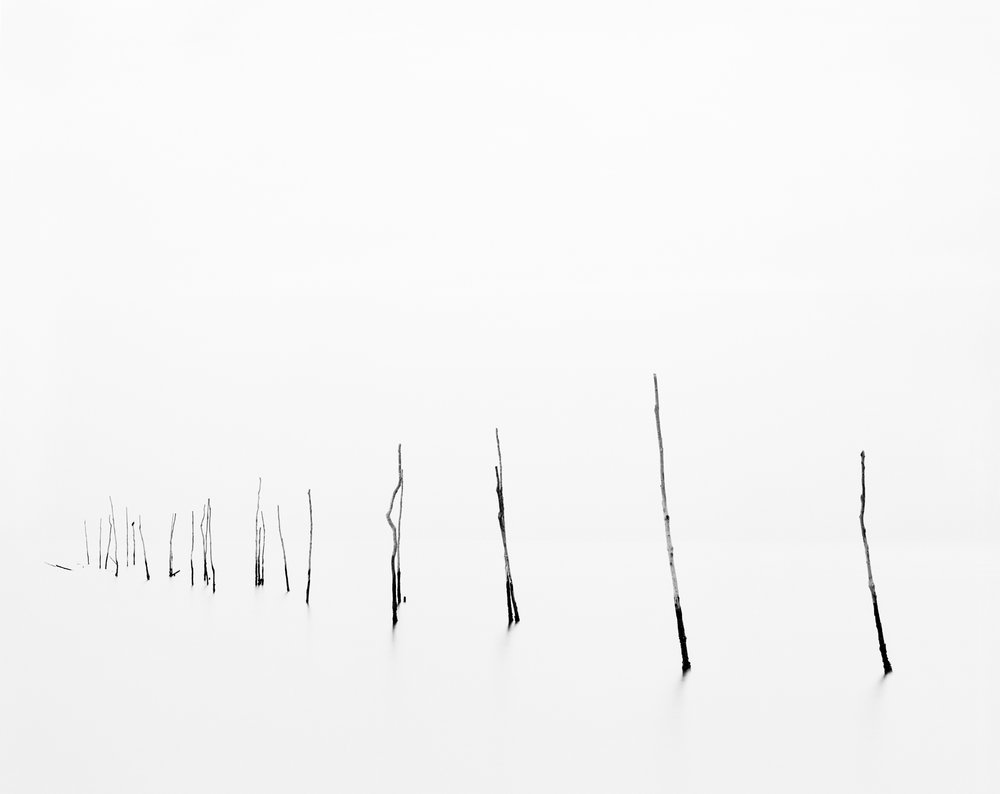 Pound Net IV, 2015. Chesapeake Bay, VA