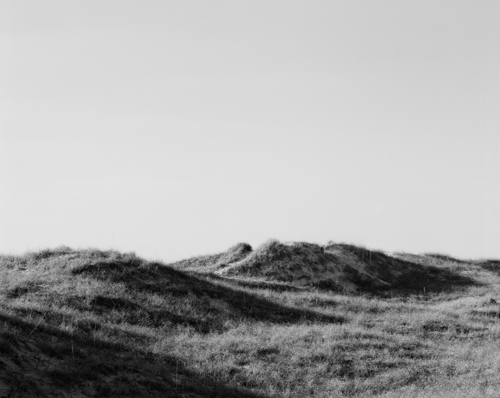 Barrier island dune study.