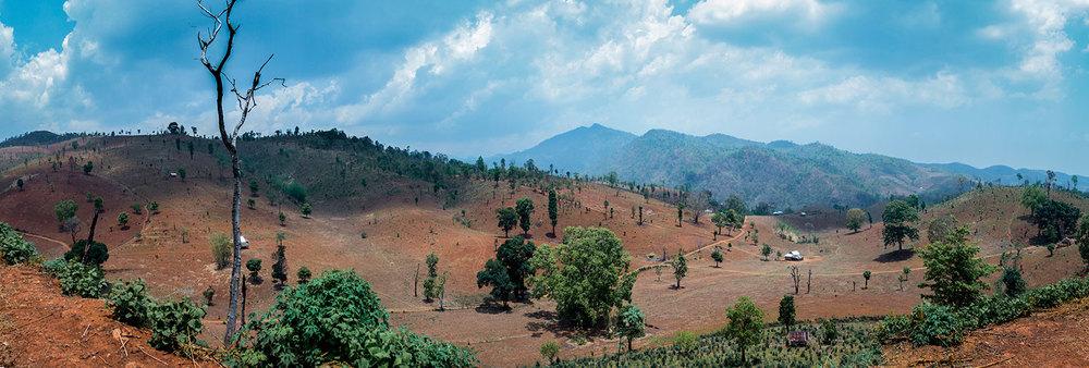 The barren landscape.