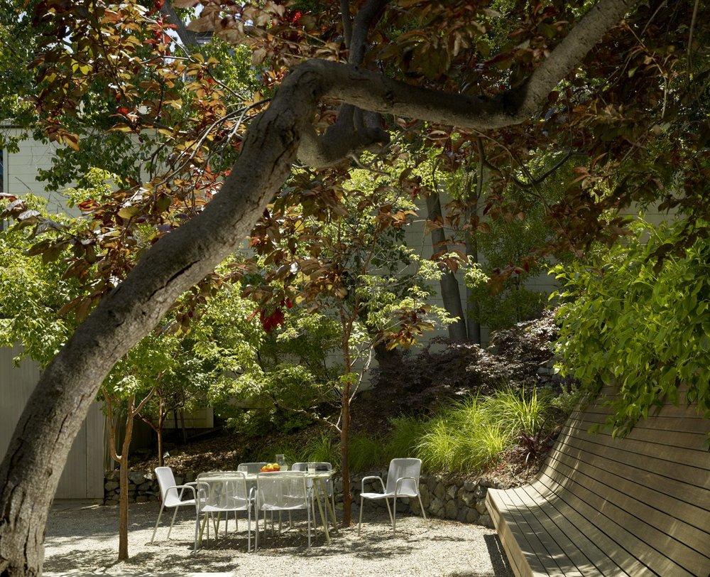 potrero-residence-garden.jpg