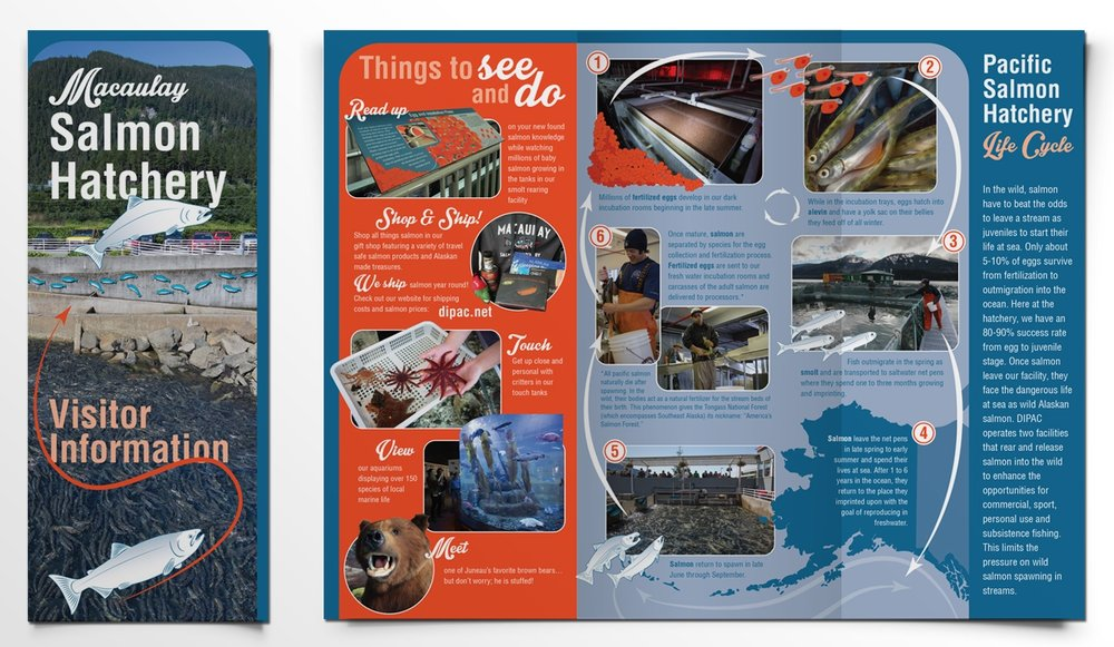 DIPAC_Brochure.jpg