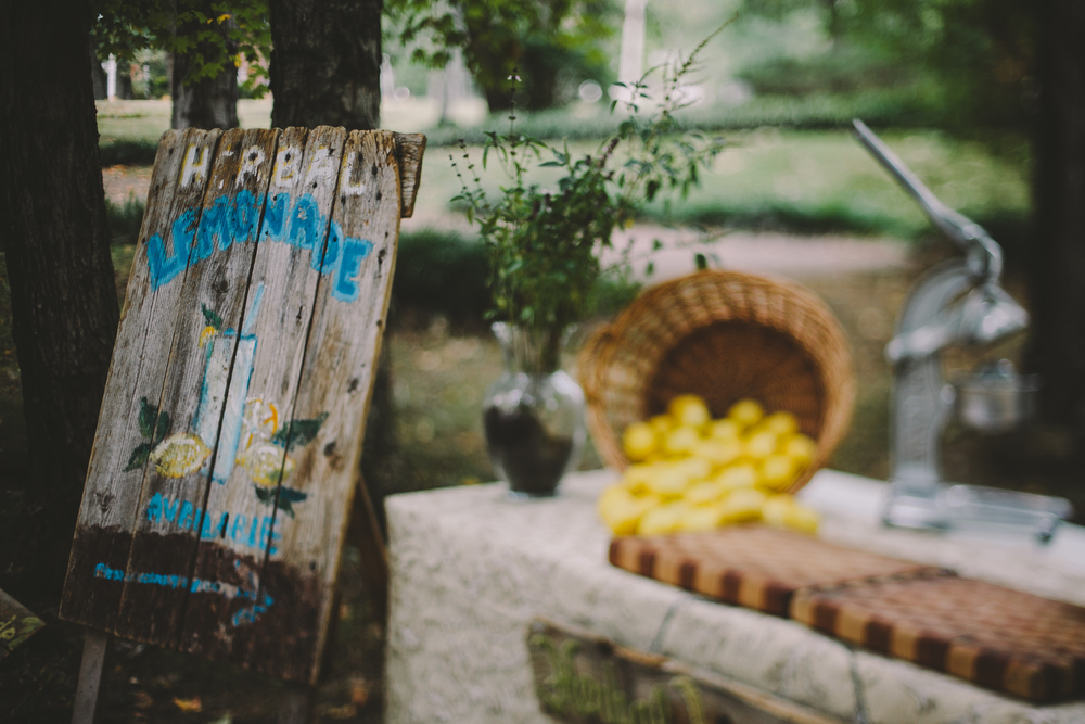 Lemonade-14.jpg