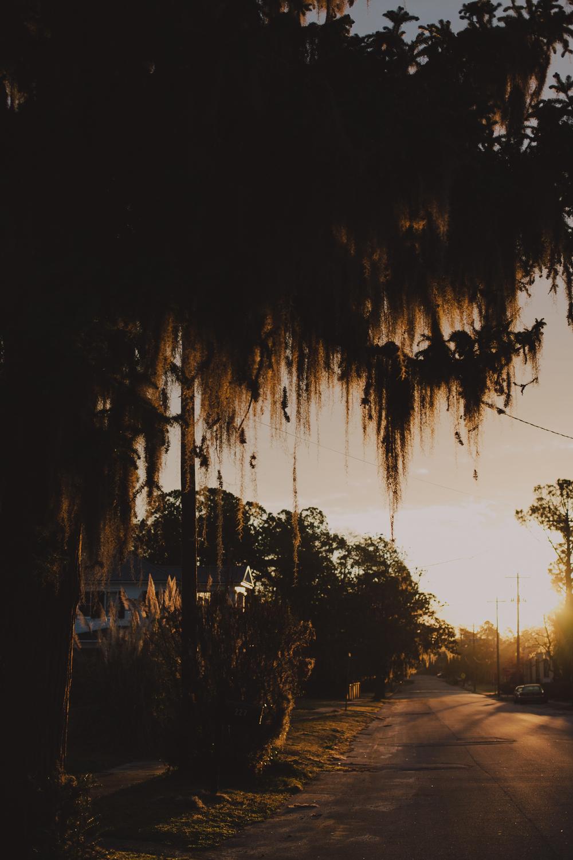 Charleston-2.jpg