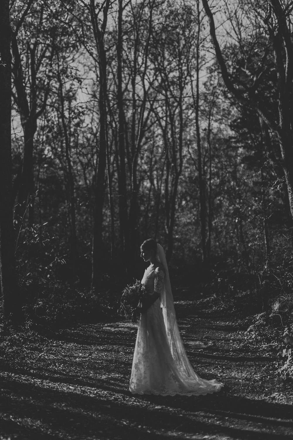 Nashville Wedding The Wrens Nest Modern Vintage Photography Anthology (26 of 105).jpg