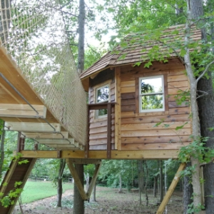 Kiddie Paradise Tree House