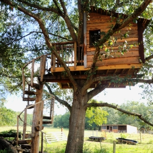 Rustic Tree House