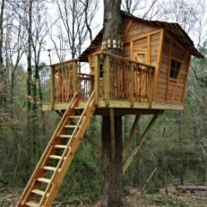 Whimsical Tree House