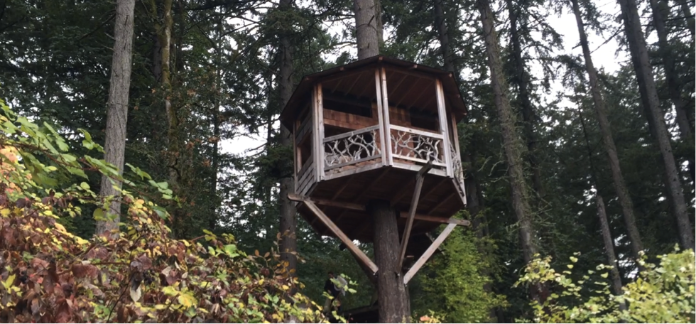 Great Treehouse in Portland Tree. (Courtesy  Sophia June )