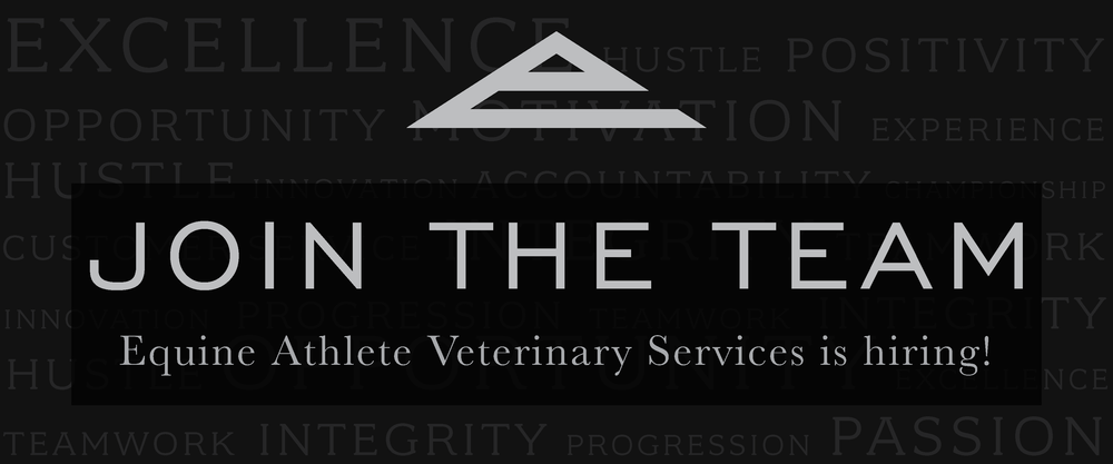 Equine Athlete Veterinary Services is hiring.png