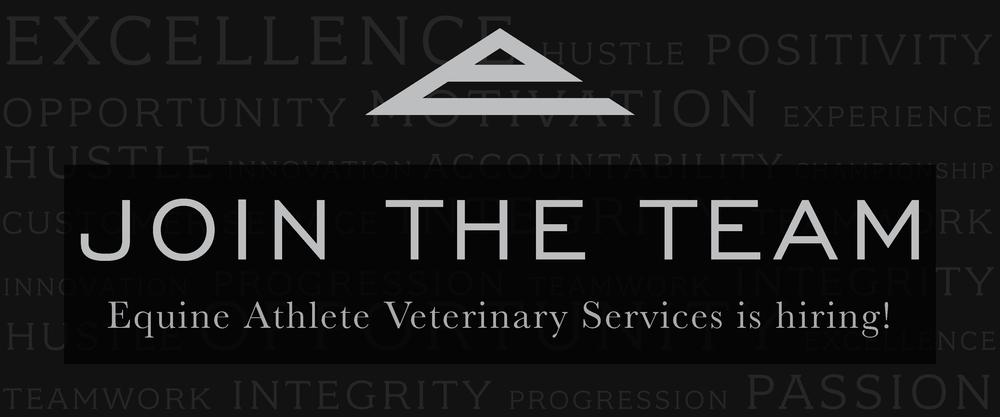 Equine Athlete is hiring employment job opportunities veterinarian.png