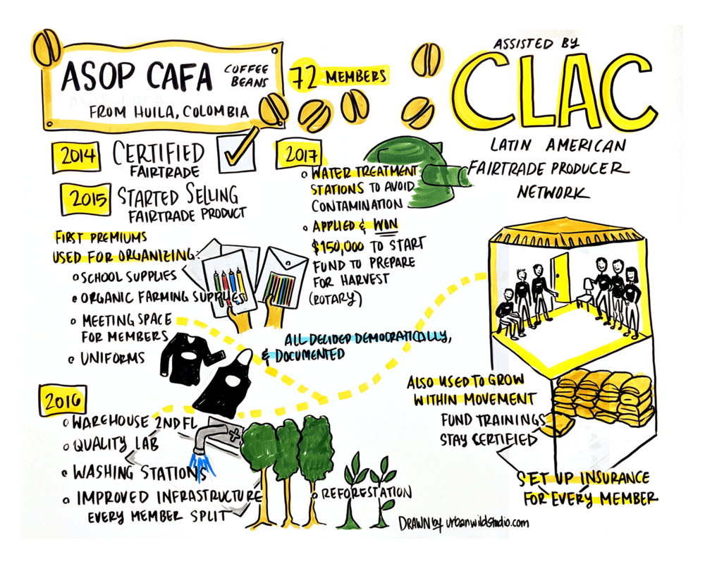 CLAC_Asop Cafa Coffee Story_Graphic Recording_Urban Wild Studio.png