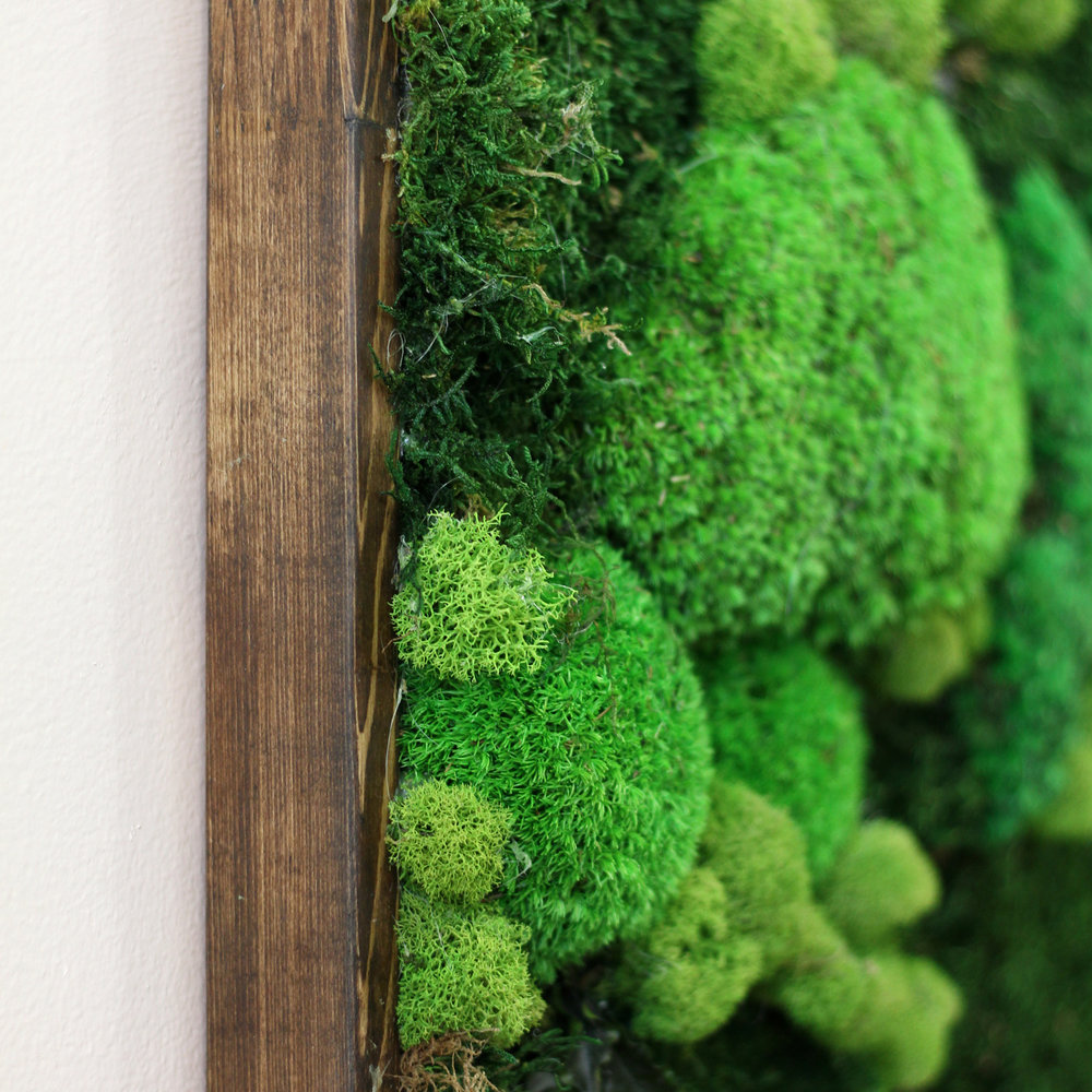 Wood Frame -