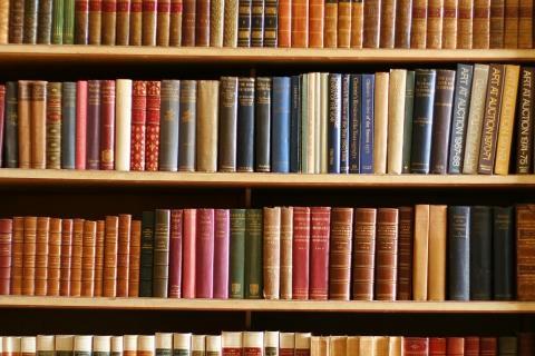 Books Bookshelf 773693 480x320
