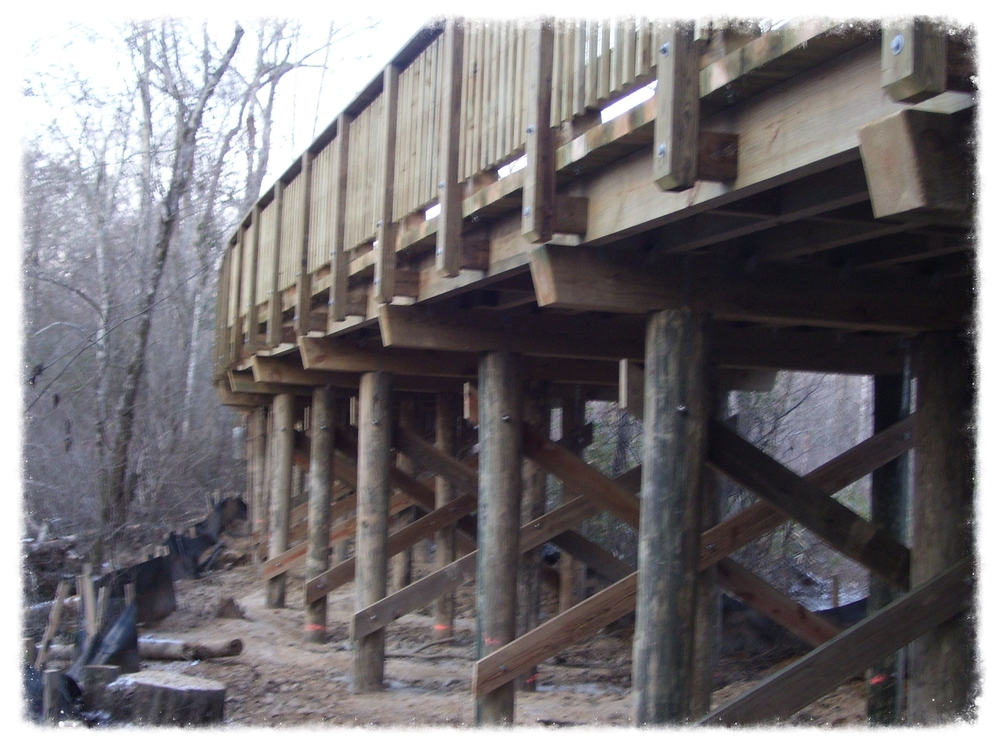 Timber Bridge
