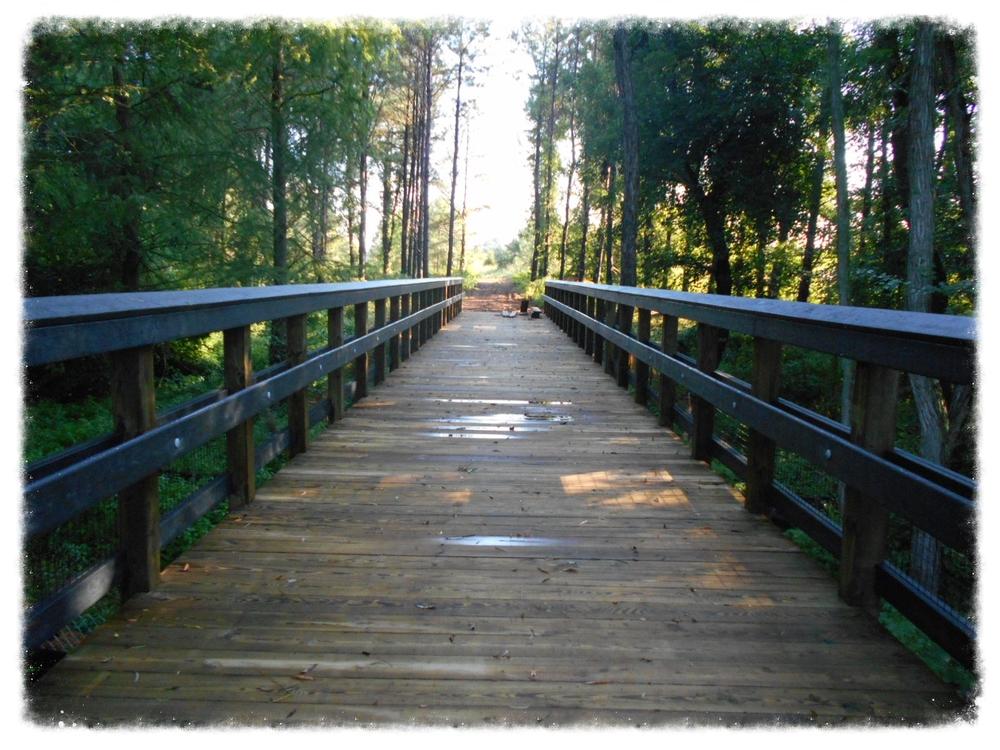 Pedestrain Walkway