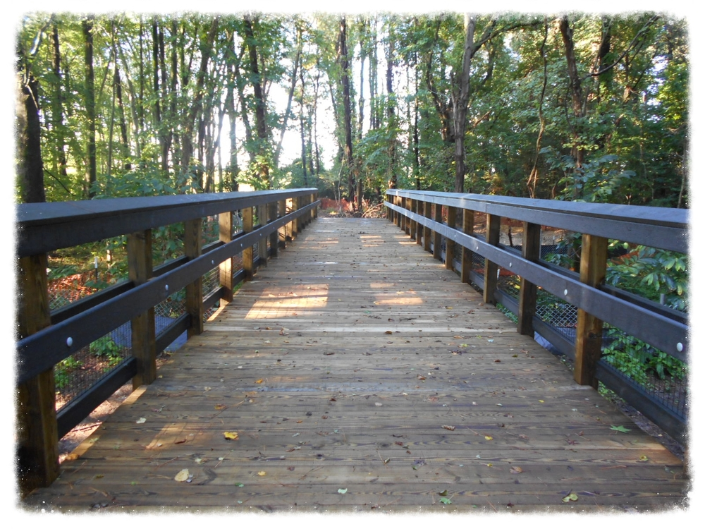 Boardwalk Nature Trail
