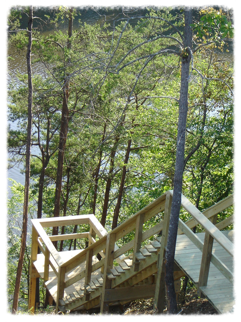 Wood Boardwalk and Handrail