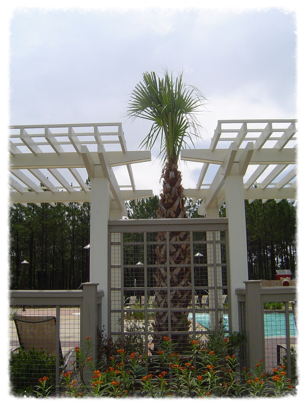 Trellis with Decorative Fence
