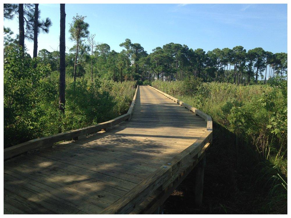ATV Bridge design and Construction