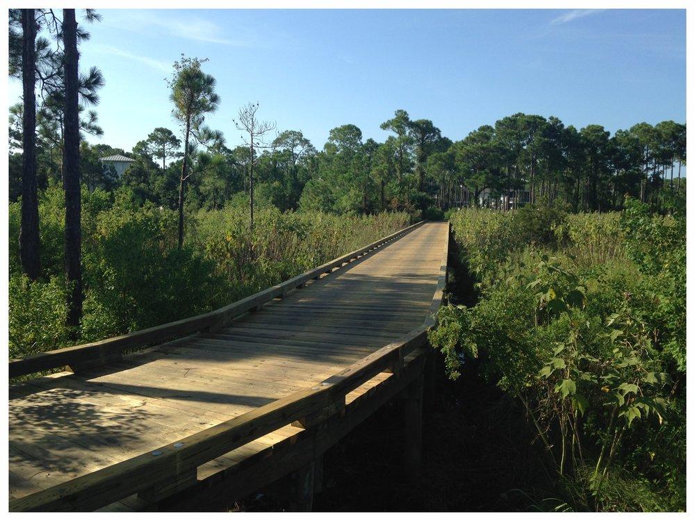 Trail Bridge Construction