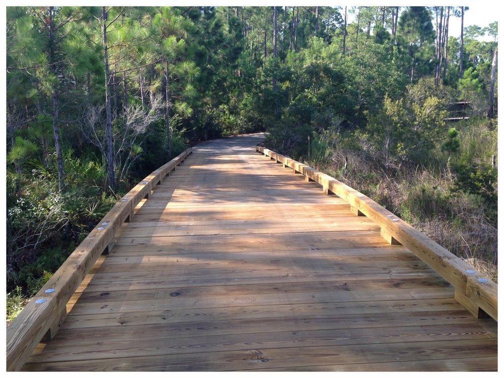 Trail Bridge Builder