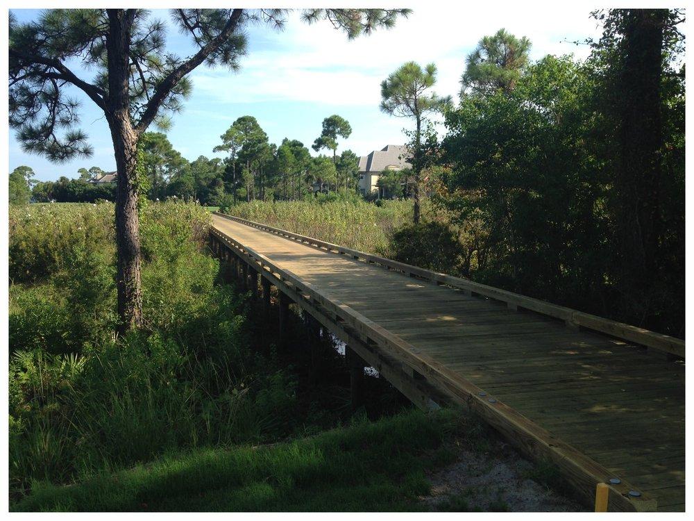 Nature Trail Bridge Builder