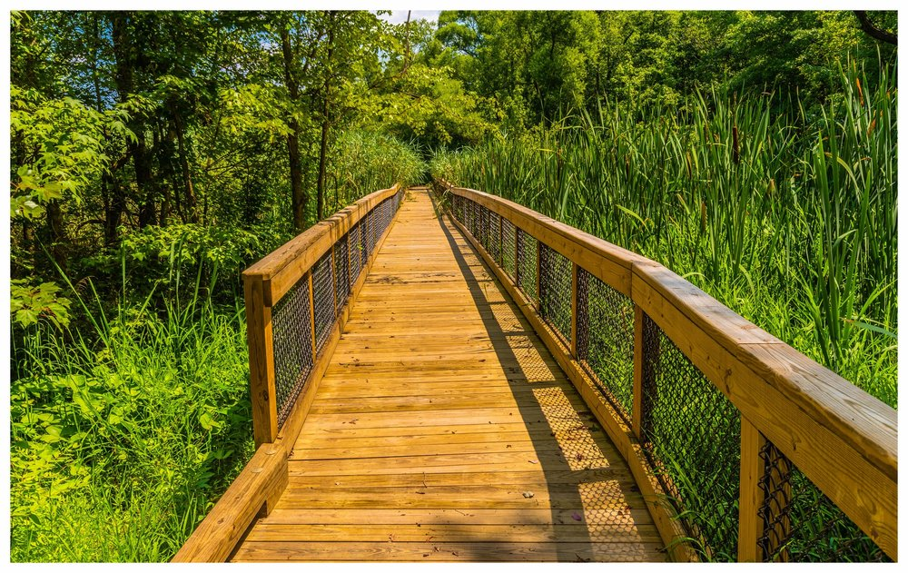 Wooden Boardwalk Construction Company