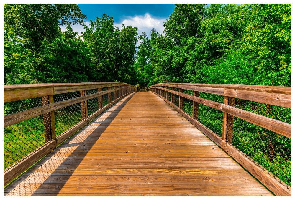Wetland Boardwalk Construction