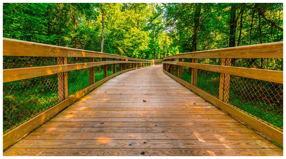 Wetland Boardwalk Design and Construction