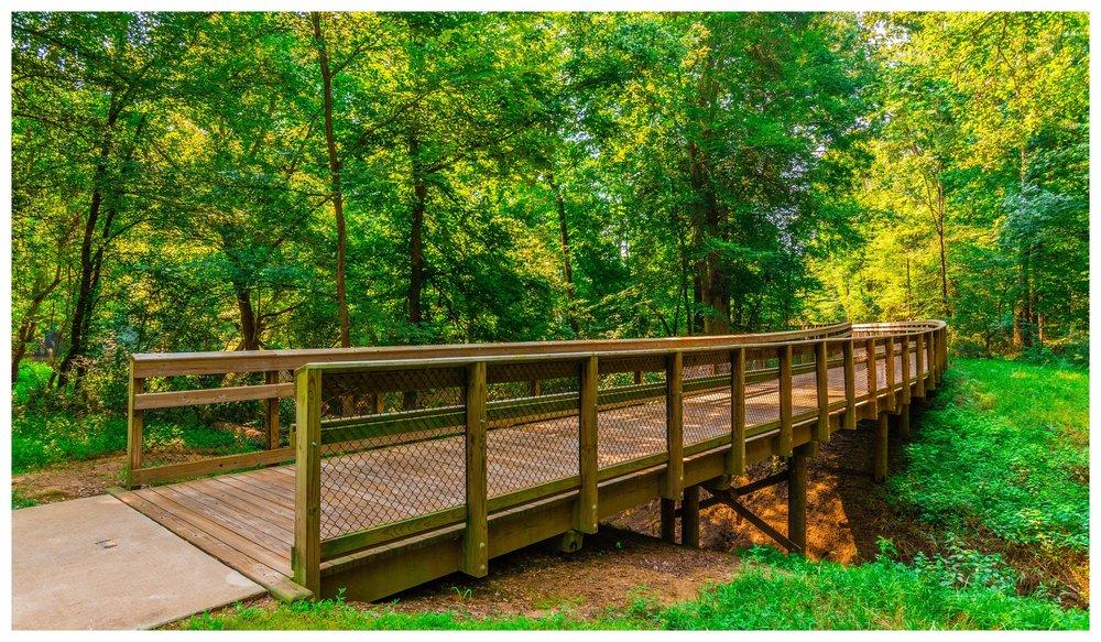 Wood Boardwalk Design