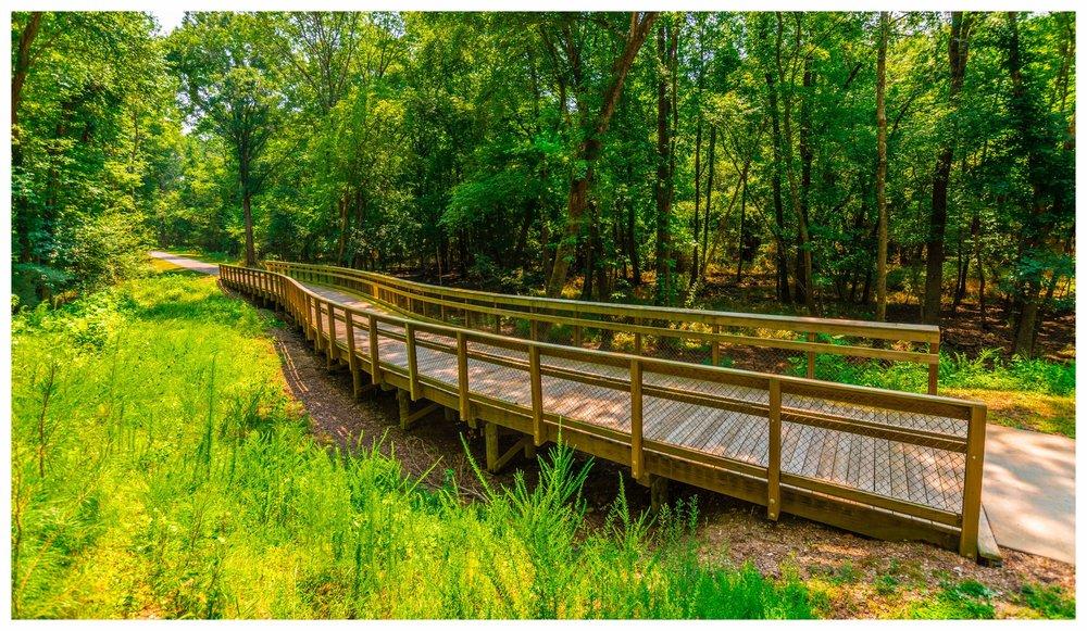 Timber Bridge Design