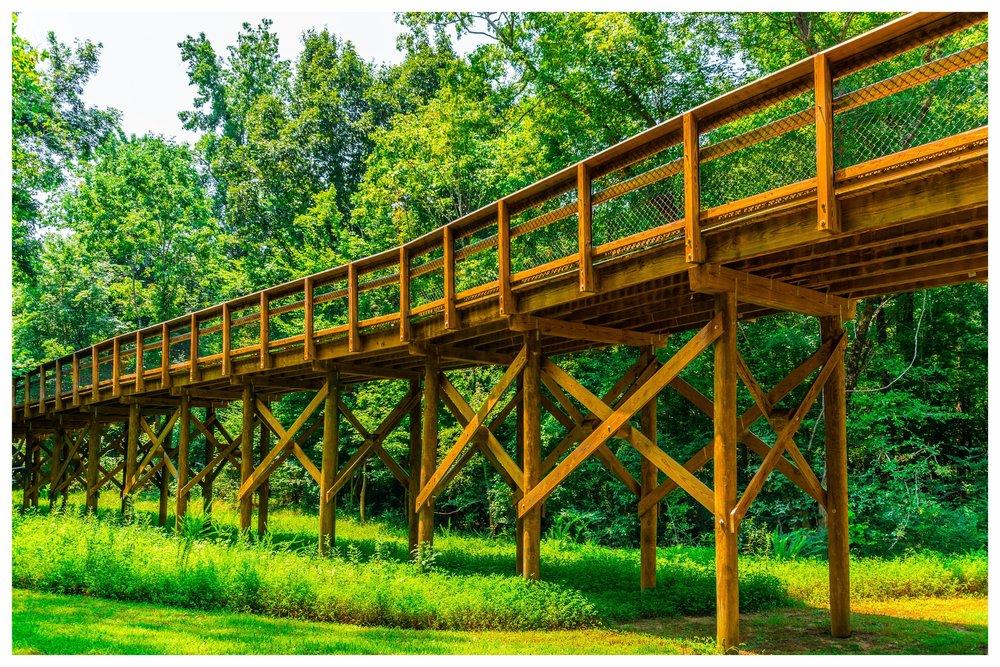 Timber Bridge Construction