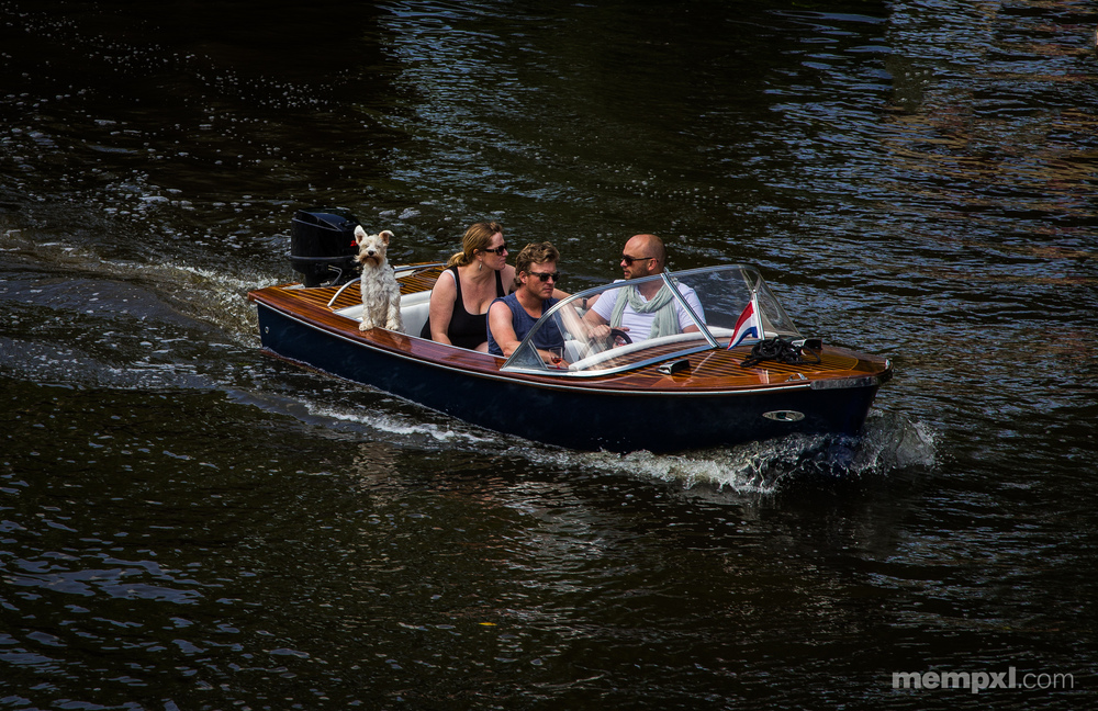 Cruising Dutch Style.jpg