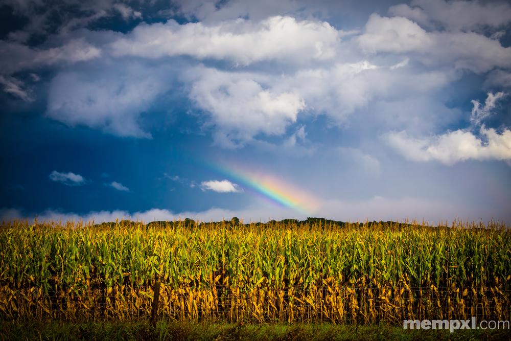 Iowa Summer Rainbow