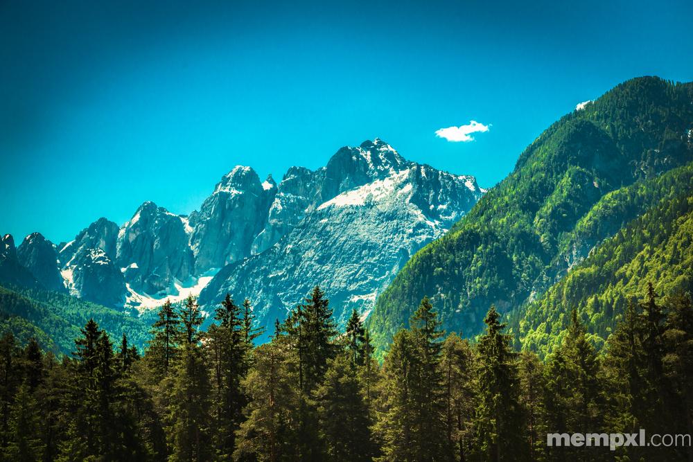 Austrian Alps  2014 WM.jpg