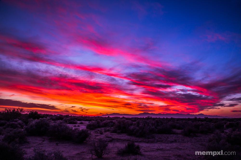 Desert Sunset 2014.jpg