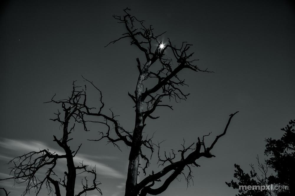 Sedona Moon After Sunset 2014.jpg