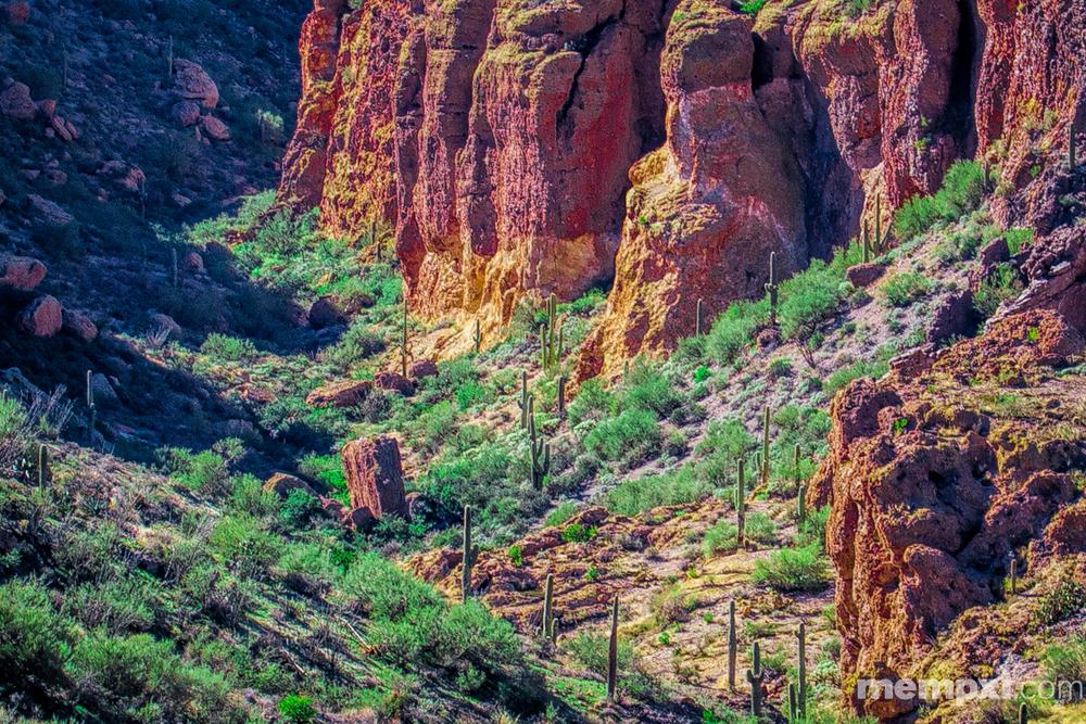Arizona canyon 2014 WM.jpg