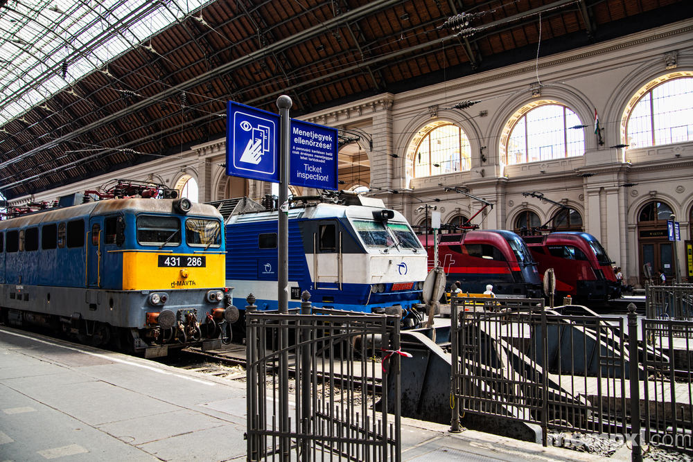 Budapest Train s 2014 WM.jpg