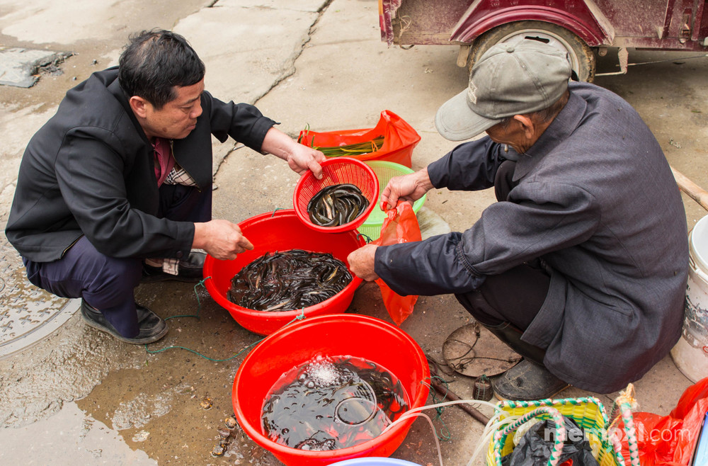 Market Lunch- Xingping April 2015.jpg