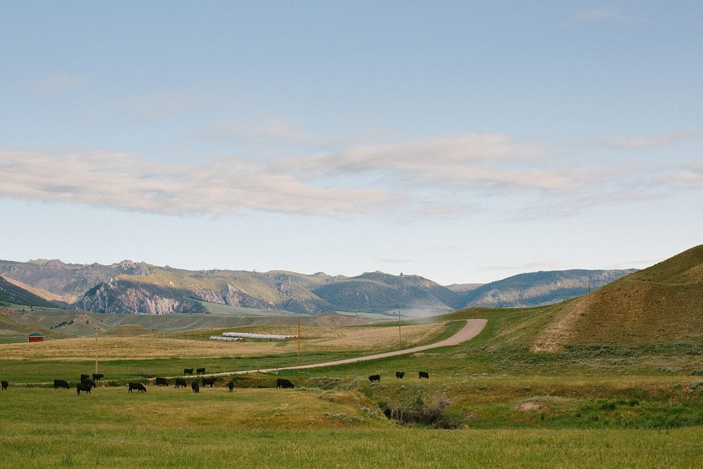 wyoming-destination-wedding-cattle-ranch-west_0001.jpg