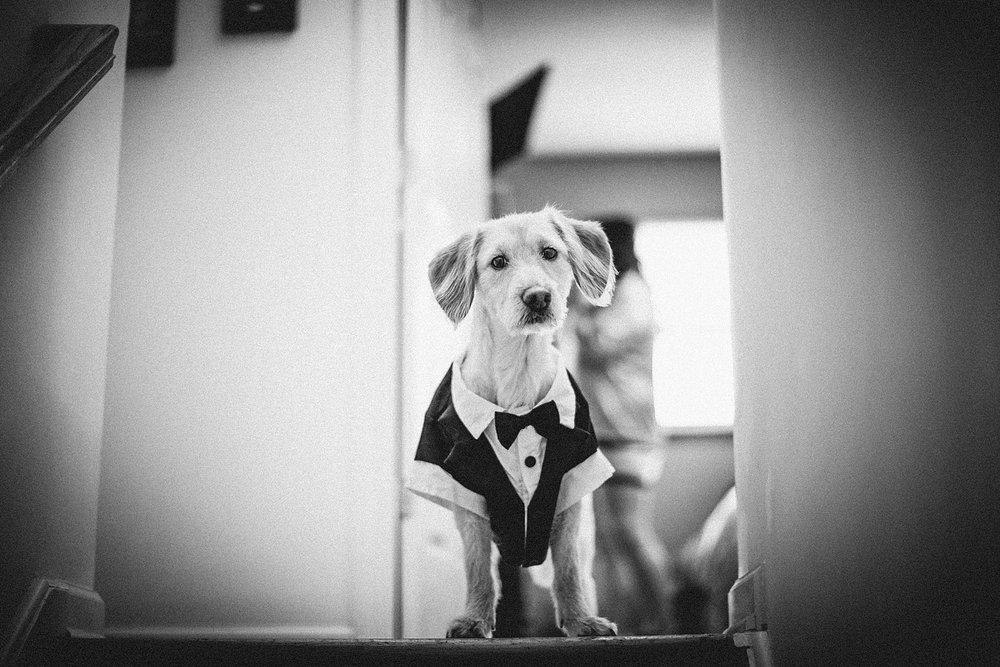 cranford-washington-nj-wedding-photographer-seasons_0004.jpg